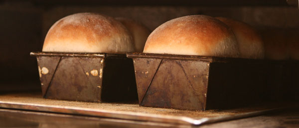 milk-loaves-oven